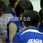 2011/12シーズン11勝から考えた応援する会会費